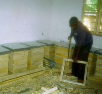 Bee Hive Production